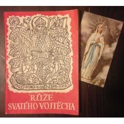 Růže svatého Vojtěcha