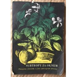 Subtropy za oknem - Pěstujeme citroníky a jiné subtropické dřeviny
